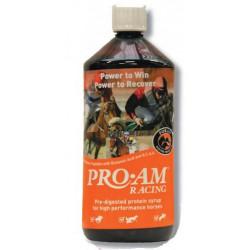 Pro-AM Racing