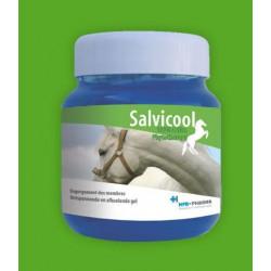 Salvicool