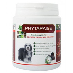 PHYTAPAISE CHIEN