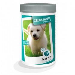 PET PHOS Croissance CA/P 1,3