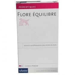 Wamine Flore Equilibre Probiotique
