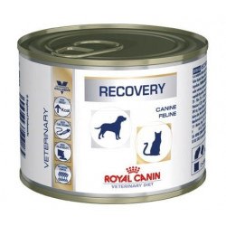 ROYAL CANIN Veterinary Diet - Recovery