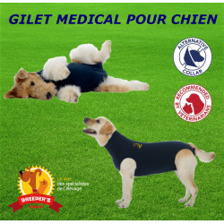 gilet médical de protection pour chien