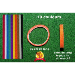 colliers identification chiot chaton scratch