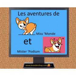 Un peu d'humour : les aventures de Miss'Monde et Mister'Podium