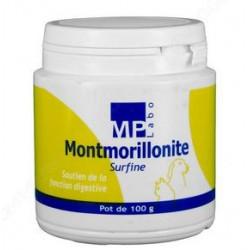 MONTMORILLONITE