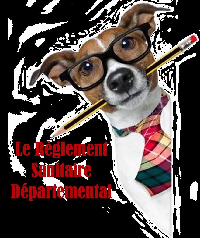 règlement sanitaire départemental élevage familial de chiens ou de chats